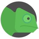 Chameleon Hacks