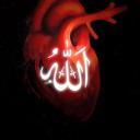 Muhammadan Path